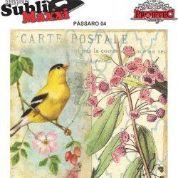 Papel Sublimaxxi - Pássaro